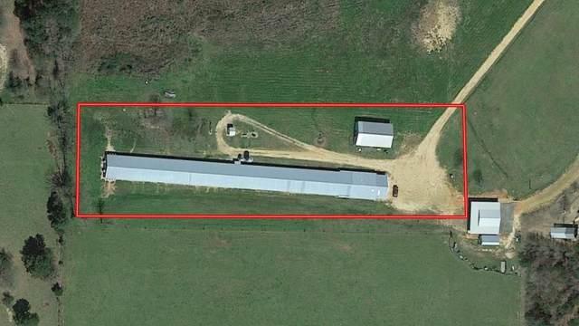 0000 St Hwy 196, Other Ar, AR 71854 (MLS #1166245) :: Five Doors Network Northwest Arkansas