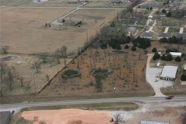 E Hwy 10, Grove, OK 74344 (MLS #1166532) :: McNaughton Real Estate