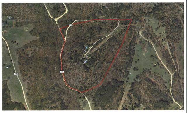 261 County Road 7155, Berryville, AR 72616 (MLS #1166571) :: McMullen Realty Group