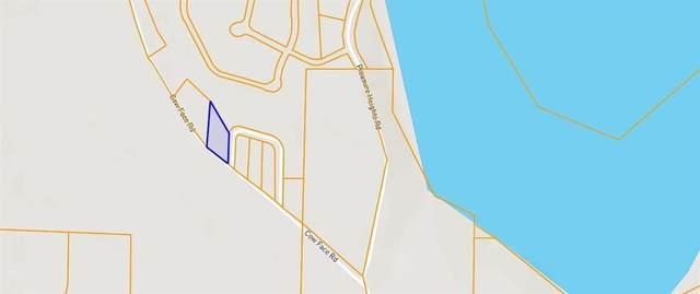 Cow Face, Springdale, AR 72765 (MLS #1169276) :: Five Doors Network Northwest Arkansas