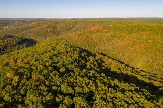 Green Glory Drive, Eureka Springs, AR 72631 (MLS #1171710) :: McNaughton Real Estate