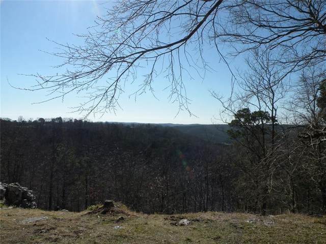167 Holiday Island Drive, Holiday Island, AR 72631 (MLS #1171806) :: McMullen Realty Group