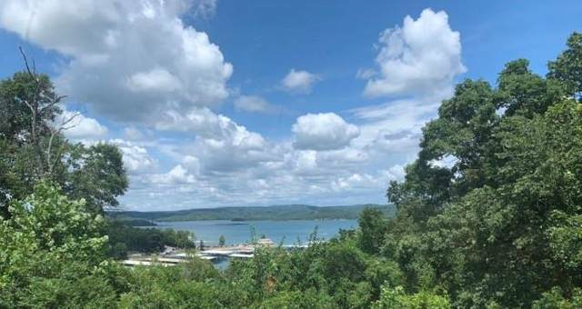 2, PT 3 Tanglewood R Park Road & Lakeview Drive, Rogers, AR 72756 (MLS #1171885) :: McNaughton Real Estate