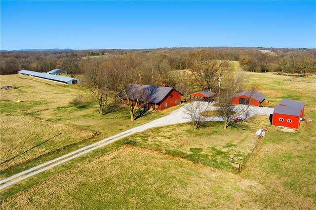 20356 Groth Road, Springdale, AR 72764 (MLS #1175354) :: Annette Gore Team | EXP Realty