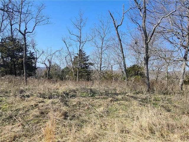 Skyview Drive, Eureka Springs, AR 72631 (MLS #1176665) :: NWA House Hunters | RE/MAX Real Estate Results