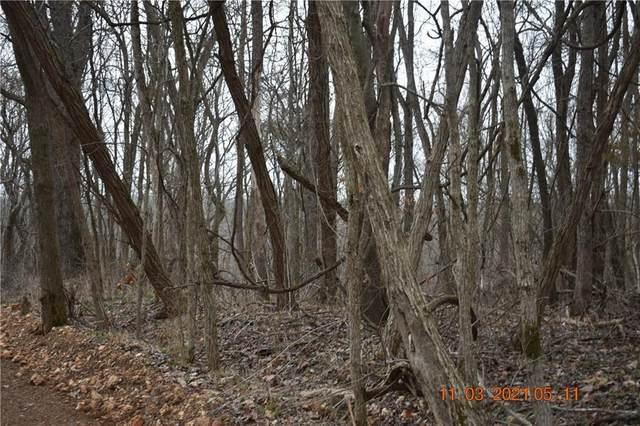 166-167 lots Huckleberry Circle, Garfield, AR 72732 (MLS #1178246) :: McNaughton Real Estate
