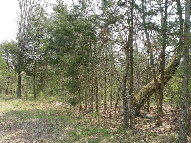 30 Eagle Drive, Holiday Island, AR 72631 (MLS #1180157) :: McMullen Realty Group