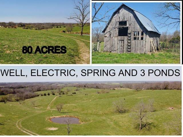 12365 Farm Road 1157, Cassville, MO 65625 (MLS #1180175) :: NWA House Hunters   RE/MAX Real Estate Results