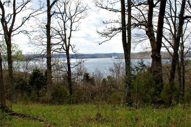 Dam Site Road, Garfield, AR 72732 (MLS #1180260) :: Annette Gore Team | EXP Realty
