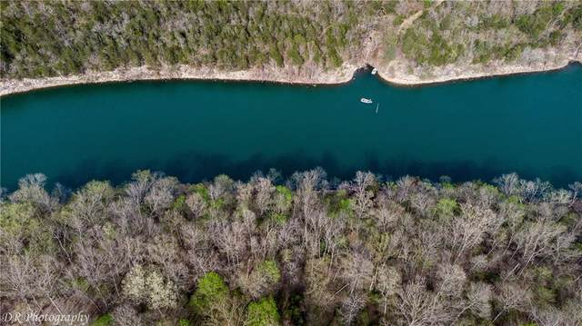Elm Lane, Holiday Island, AR 72631 (MLS #1180552) :: NWA House Hunters | RE/MAX Real Estate Results
