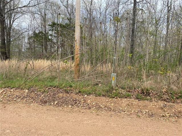 Holmes Road, Other Ar, AR 72560 (MLS #1180689) :: McNaughton Real Estate