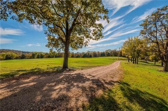 16809 Tyson Hog Farm Road, Winslow, AR 72959 (MLS #1180910) :: NWA House Hunters | RE/MAX Real Estate Results