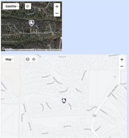 Lot 4 Block 2 Moody Circle, Bella Vista, AR 72715 (MLS #1181340) :: McNaughton Real Estate