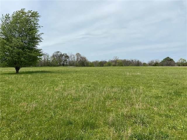 193 Blue Springs Road, Goshen, AR 72727 (MLS #1181793) :: McNaughton Real Estate