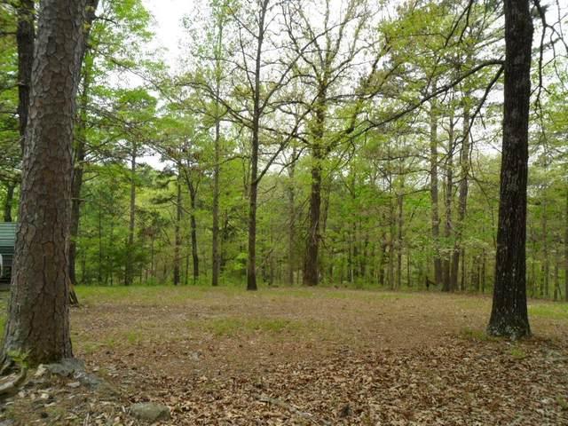 18054 Railroad Cut Road, Rogers, AR 72756 (MLS #1182216) :: Five Doors Network Northwest Arkansas
