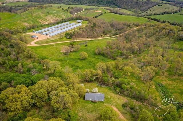 15984 Sunny Lane, Alpena, AR 72611 (MLS #1182368) :: Five Doors Network Northwest Arkansas