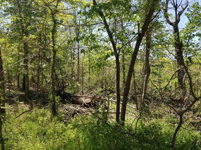 Turriff Circle, Bella Vista, AR 72715 (MLS #1182628) :: NWA House Hunters | RE/MAX Real Estate Results