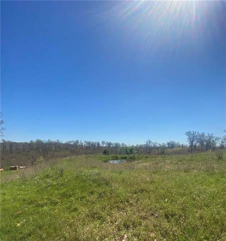1 River Ranch, Kansas, OK 74347 (MLS #1182690) :: United Country Real Estate