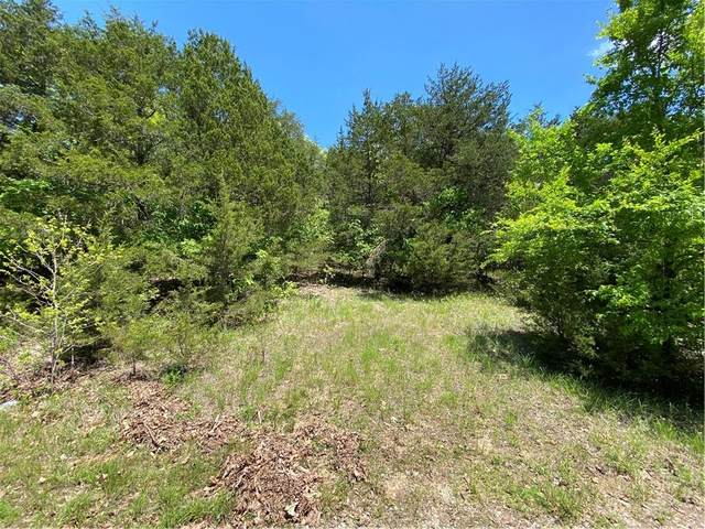 TBD Starlite Avenue, Holiday Island, AR 72631 (MLS #1184529) :: Annette Gore Team | EXP Realty
