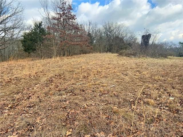 20242 Mount Olive Road, Elkins, AR 72727 (MLS #1184667) :: McNaughton Real Estate