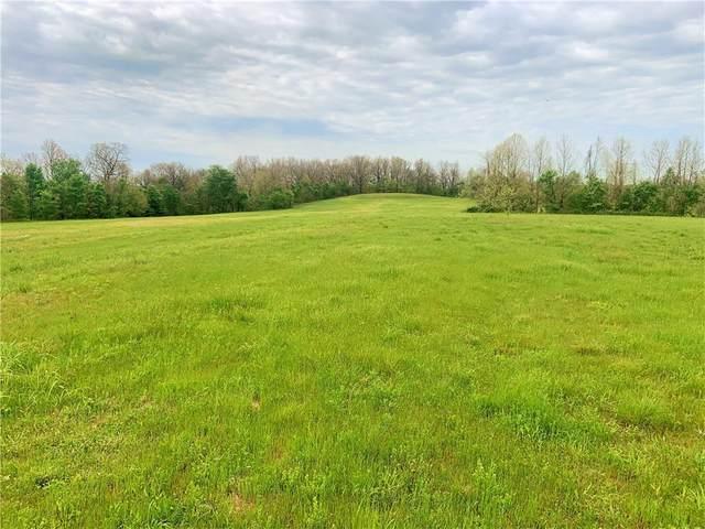Imperial Lane, Anderson, MO 64831 (MLS #1185168) :: McNaughton Real Estate