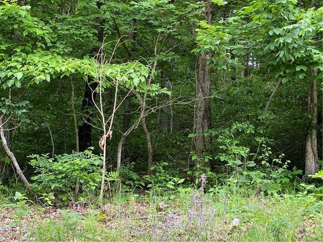 TBD Tempest Lane, Holiday Island, AR 72631 (MLS #1185313) :: McMullen Realty Group