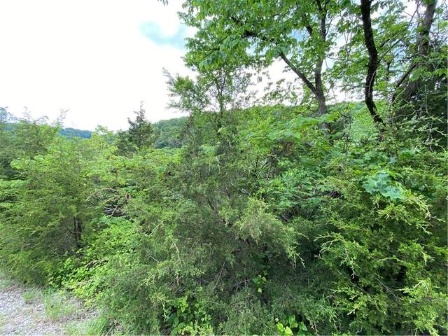 TBD Starlite Avenue, Holiday Island, AR 72631 (MLS #1185351) :: McMullen Realty Group