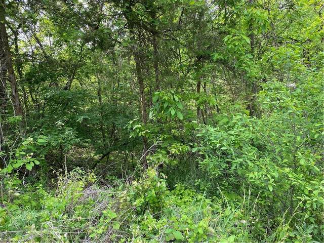 TBD Starlite Avenue, Holiday Island, AR 72631 (MLS #1185357) :: McMullen Realty Group
