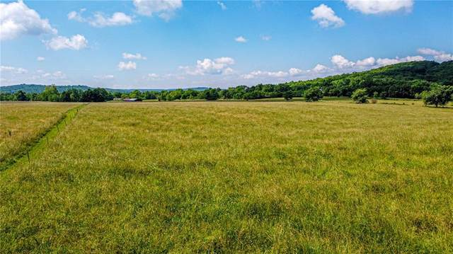 Tract 4 Fire Tower Road, Goshen, AR 72735 (MLS #1187270) :: McNaughton Real Estate