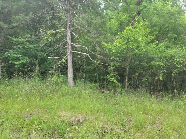 167 Wild Turkey Drive, Holiday Island, AR 72631 (MLS #1187701) :: McNaughton Real Estate