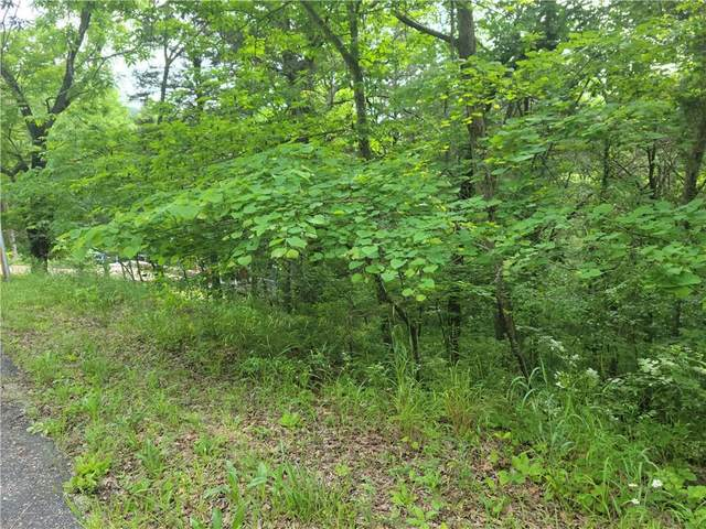 114 Thunderbird Drive, Eureka Springs, AR 72631 (MLS #1187707) :: McNaughton Real Estate
