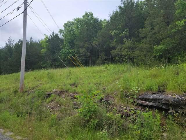 45 Wild Turkey Drive, Holiday Island, AR 72631 (MLS #1187717) :: McNaughton Real Estate