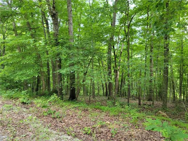 9 Wildcat Lane, Holiday Island, AR 72631 (MLS #1187795) :: NWA House Hunters | RE/MAX Real Estate Results