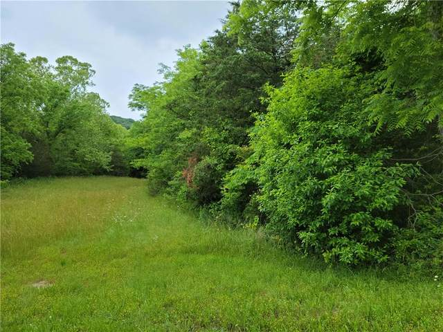 212 Table Rock, Holiday Island, AR 72631 (MLS #1187802) :: NWA House Hunters | RE/MAX Real Estate Results