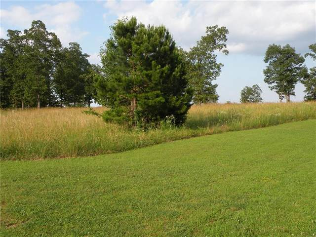35 Park Drive, Holiday Island, AR 72631 (MLS #1188331) :: McMullen Realty Group
