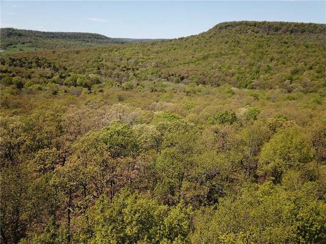 Cr 993, Green Forest, AR 72638 (MLS #1188423) :: McMullen Realty Group