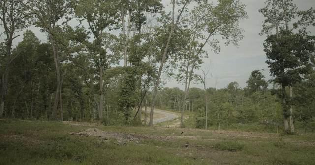 Stillhouse Springs Drive, Highfill, AR 72712 (MLS #1189196) :: McNaughton Real Estate