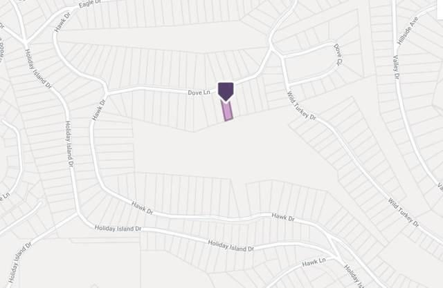 Lot 36 Blk 10 Dove Lane, Eureka Springs, AR 72631 (MLS #1191777) :: McNaughton Real Estate