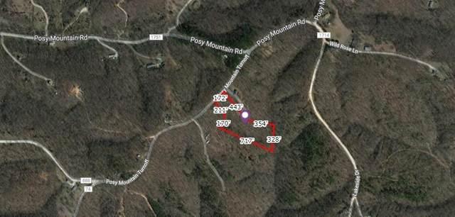 Posy Mountain Turnoff, Rogers, AR 72756 (MLS #1192005) :: McNaughton Real Estate