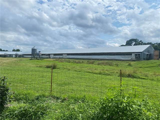 8201 20th Highway, Eucha, OK 74346 (MLS #1192286) :: McNaughton Real Estate