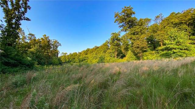 000 Rackley Mountain Road, Chester, AR 72934 (MLS #1194417) :: McNaughton Real Estate
