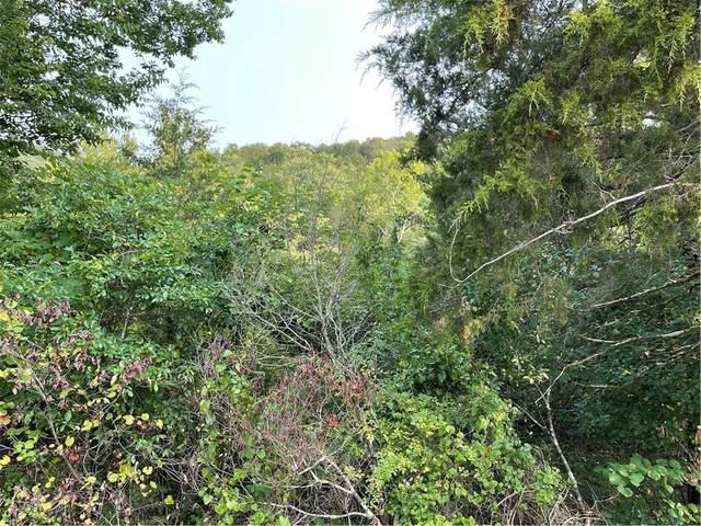 6 Wild Turkey Drive, Holiday Island, AR 72631 (MLS #1196927) :: McNaughton Real Estate