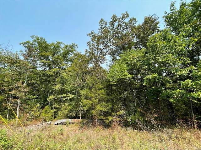 113 Stateline Drive, Holiday Island, AR 72631 (MLS #1196956) :: NWA House Hunters | RE/MAX Real Estate Results