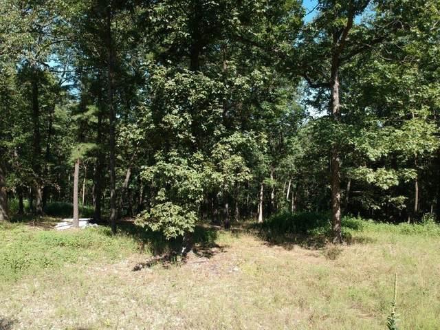 Lot 10 Green Glory Drive, Eureka Springs, AR 72631 (MLS #1197169) :: NWA House Hunters   RE/MAX Real Estate Results