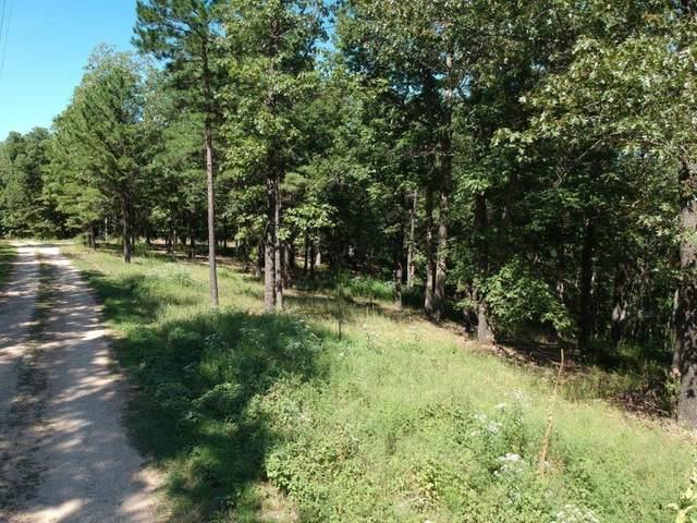 Lot 11 Green Glory Drive, Eureka Springs, AR 72631 (MLS #1197173) :: NWA House Hunters   RE/MAX Real Estate Results