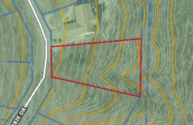 Lockerbie Drive, Bella Vista, AR 72715 (MLS #1197220) :: McNaughton Real Estate