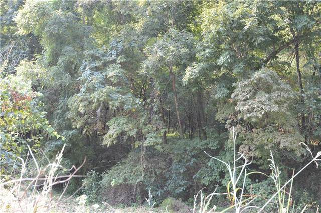 Esculapia Hollow Road, Rogers, AR 72758 (MLS #1197477) :: McNaughton Real Estate