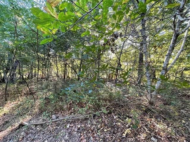 13 Opal Lane, Holiday Island, AR 72631 (MLS #1198694) :: Five Doors Network Northwest Arkansas
