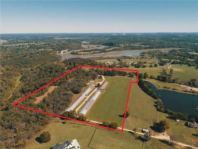 4492 Tom Perry Road, Springdale, AR 72764 (MLS #1201486) :: McNaughton Real Estate