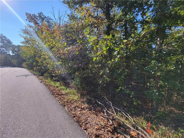 Fountainhall Drive, Bella Vista, AR 72715 (MLS #1201495) :: McMullen Realty Group